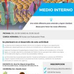 CURSO ONLINE: MEDIO INTERNO